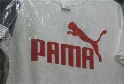 【米国】ランニング中に野生のピューマに襲われた男性、素手で絞め○す コロラド州
