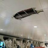 【豊洲市場】連絡通路の天井崩落、フォークリフトの「ツメ」を上げたまま走行で 月1回のハイペースで穴があく状況