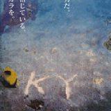 【研究】サンゴを傷つけた犯人は『プラスチックごみ』と朝日新聞